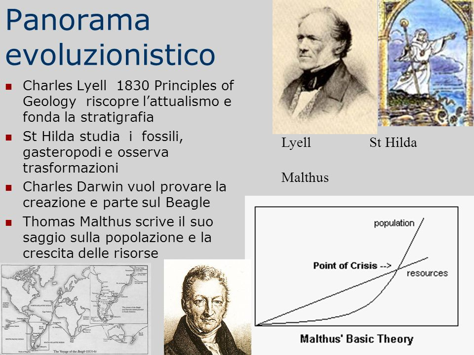 Panorama evoluzionistico Charles Lyell 1830 Principles of Geology riscopre lattualismo e fonda la stratigrafia St Hilda studia i fossili, gasteropodi