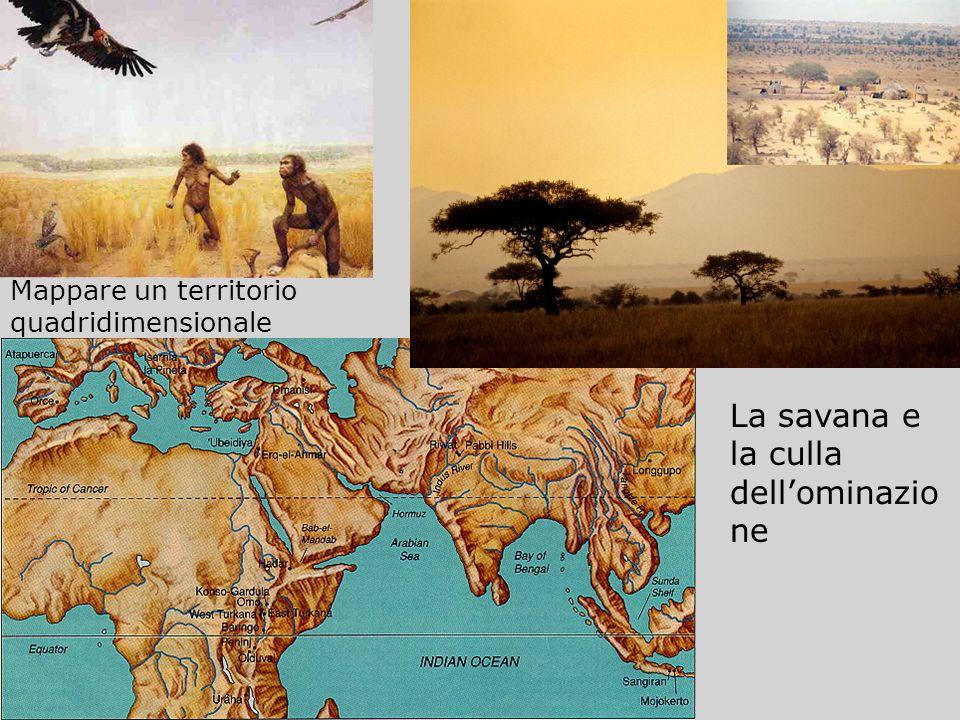 La savana e la culla dellominazio ne Mappare un territorio quadridimensionale