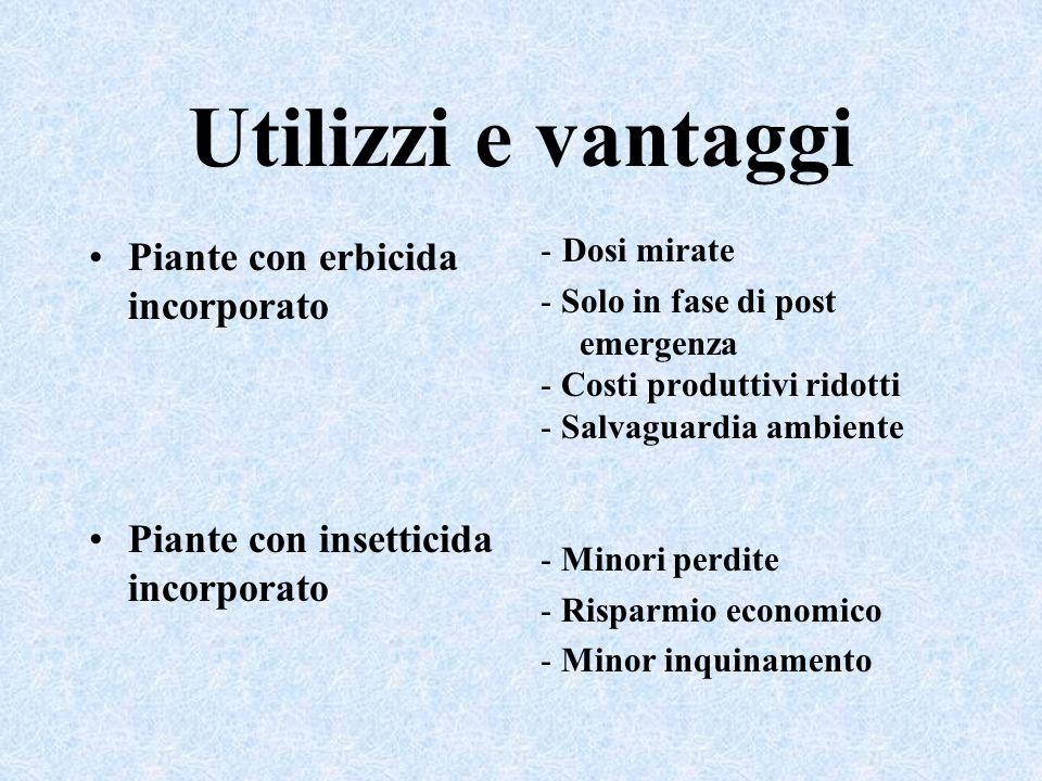 Utilizzi e vantaggi Piante con erbicida incorporato Piante con insetticida incorporato - Dosi mirate - Solo in fase di post emergenza - Costi produtti