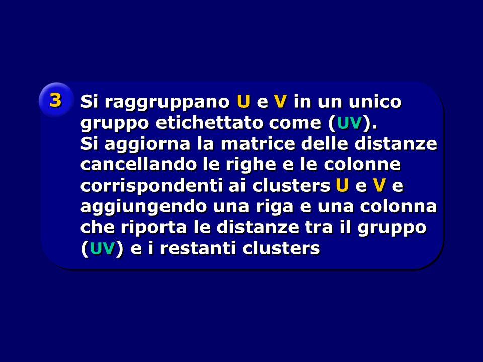 Si raggruppano U e V in un unico gruppo etichettato come ( UV ). Si aggiorna la matrice delle distanze cancellando le righe e le colonne corrispondent