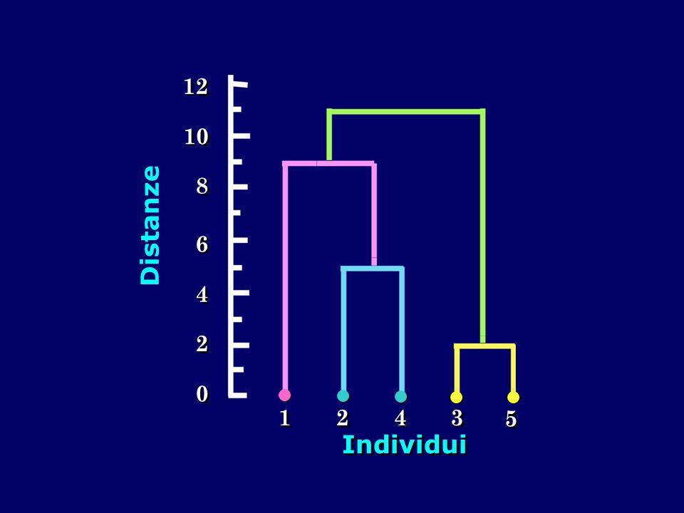 1 1 Individui Distanze 0 0 2 2 4 4 6 6 8 8 10 12 2 2 4 4 3 3 5 5