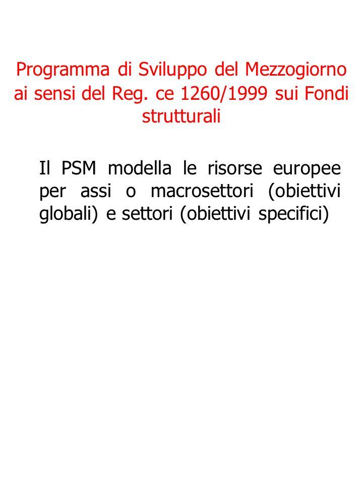 Programma di Sviluppo del Mezzogiorno ai sensi del Reg.