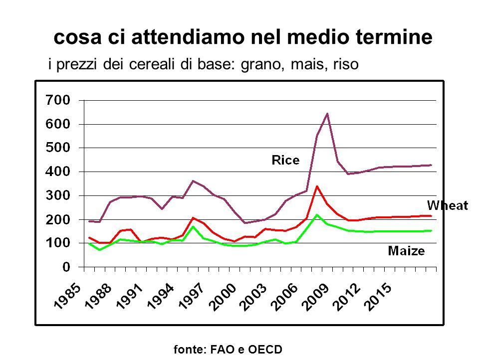cosa ci attendiamo nel medio termine fonte: FAO e OECD i prezzi dei cereali di base: grano, mais, riso