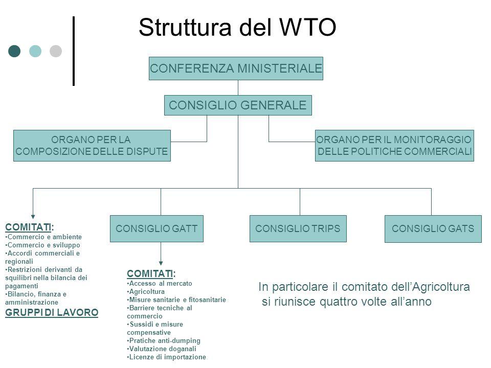 Struttura del WTO CONFERENZA MINISTERIALE CONSIGLIO GENERALE ORGANO PER LA COMPOSIZIONE DELLE DISPUTE ORGANO PER IL MONITORAGGIO DELLE POLITICHE COMME