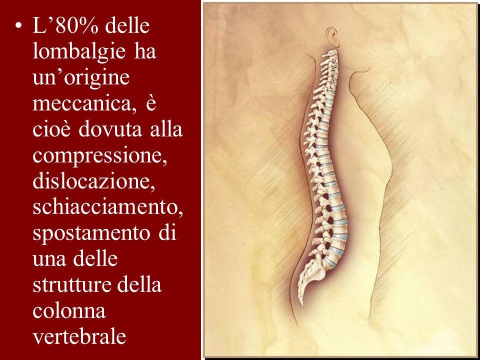 L80% delle lombalgie ha unorigine meccanica, è cioè dovuta alla compressione, dislocazione, schiacciamento, spostamento di una delle strutture della c