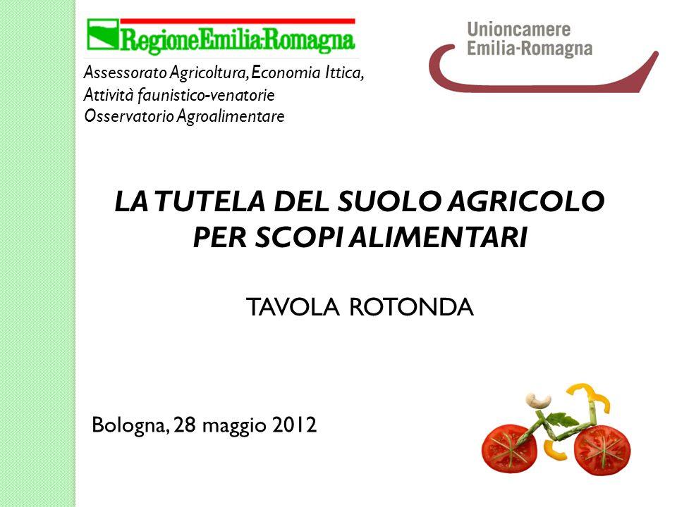 Assessorato Agricoltura, Economia Ittica, Attività faunistico-venatorie Osservatorio Agroalimentare Bologna, 28 maggio 2012 LA TUTELA DEL SUOLO AGRICOLO PER SCOPI ALIMENTARI TAVOLA ROTONDA