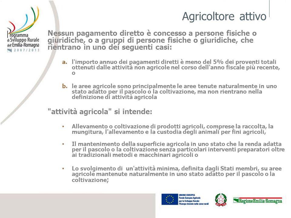 Agricoltore attivo Nessun pagamento diretto è concesso a persone fisiche o giuridiche, o a gruppi di persone fisiche o giuridiche, che rientrano in un