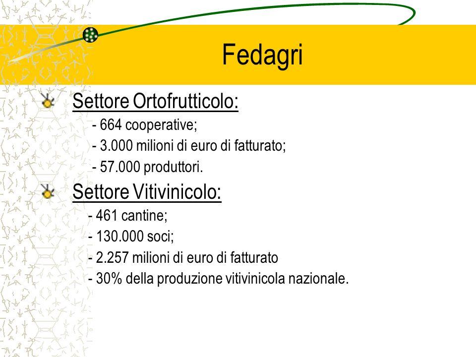 Fedagri Settore Ortofrutticolo: - 664 cooperative; - 3.000 milioni di euro di fatturato; - 57.000 produttori.