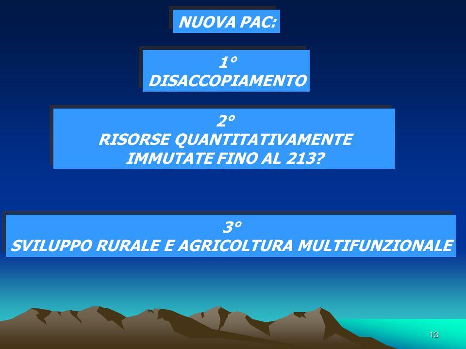 13 NUOVA PAC: 2° RISORSE QUANTITATIVAMENTE IMMUTATE FINO AL 213.