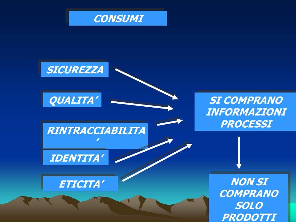29 CRITICITA PREVALENTI: 1° CONCENTRAZIONE DEL RISCHIO 1° CONCENTRAZIONE DEL RISCHIO 2° ENORME FABBISOGNO DI RISORSE IMMOBILIZZATE E CIRCOLANTI 2° ENORME FABBISOGNO DI RISORSE IMMOBILIZZATE E CIRCOLANTI 3° DURA RIGIDITA OPERATIVA 3° DURA RIGIDITA OPERATIVA 4° ALTA COMPLESSITA GESTIONALE 4° ALTA COMPLESSITA GESTIONALE