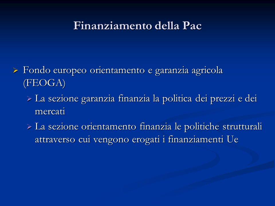 Finanziamento della Pac Fondo europeo orientamento e garanzia agricola (FEOGA) Fondo europeo orientamento e garanzia agricola (FEOGA) La sezione garan