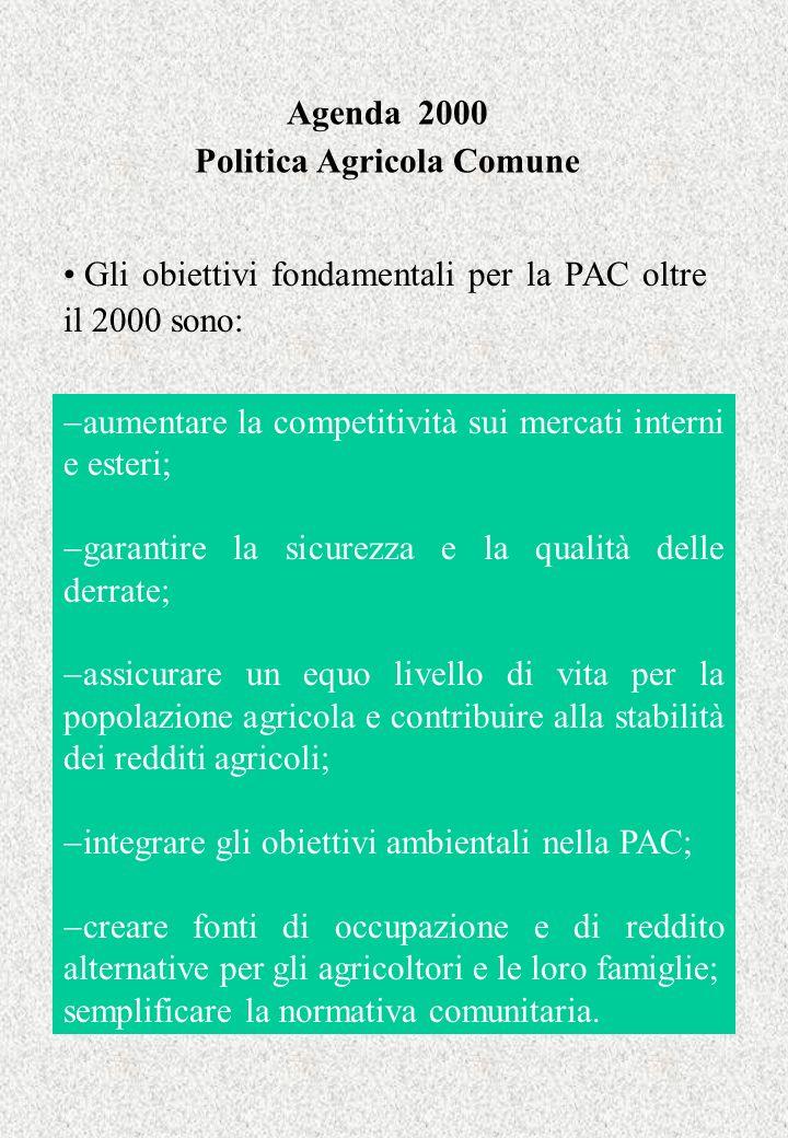 Agenda 2000 Politica Agricola Comune Gli obiettivi fondamentali per la PAC oltre il 2000 sono: aumentare la competitività sui mercati interni e esteri