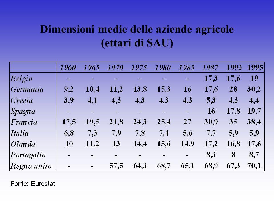 Dimensioni medie delle aziende agricole (ettari di SAU)