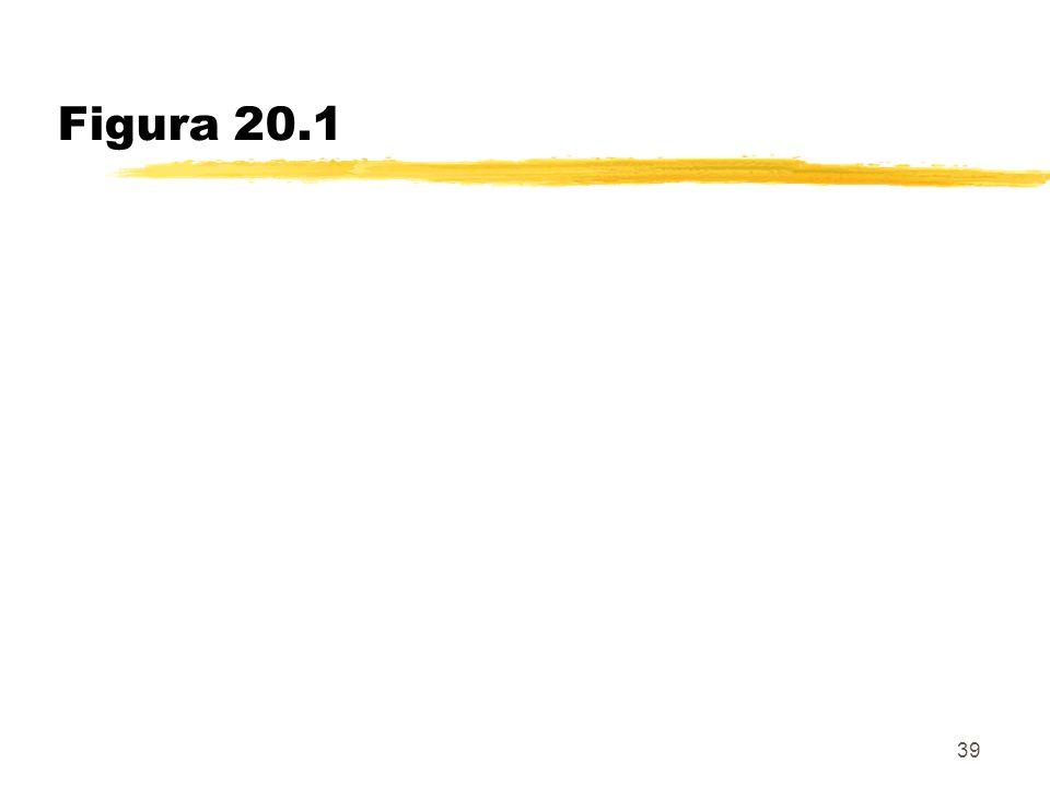 Figura 20.1 39
