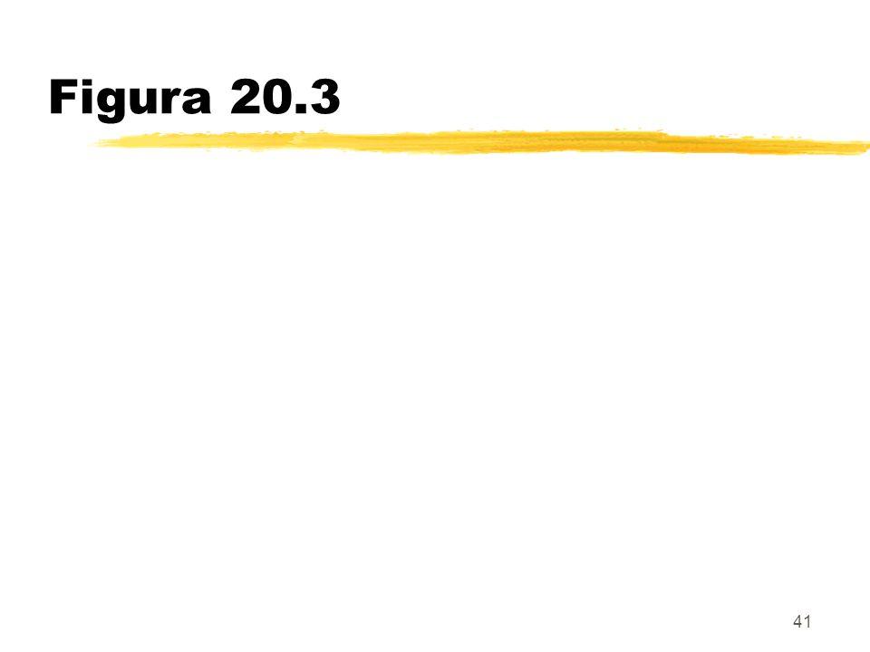 Figura 20.3 41