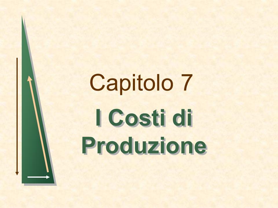 Capitolo 7 I Costi di Produzione