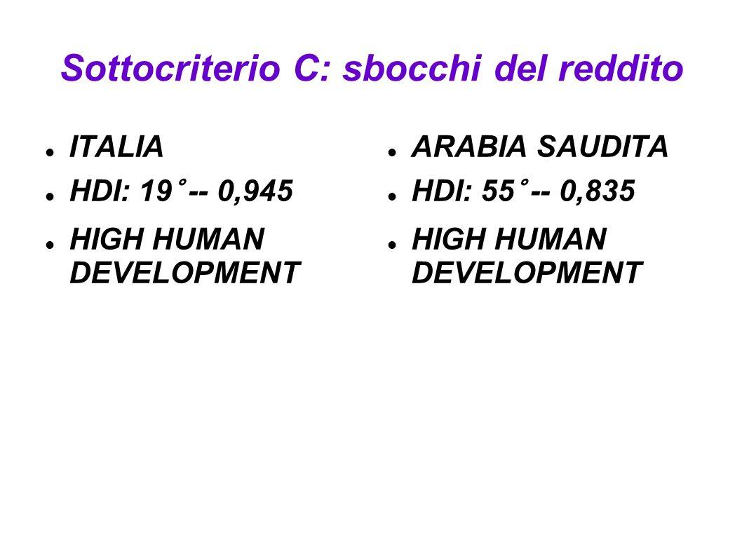 Sottocriterio C: sbocchi del reddito ITALIA HDI: 19° -- 0,945 HIGH HUMAN DEVELOPMENT ARABIA SAUDITA HDI: 55° -- 0,835 HIGH HUMAN DEVELOPMENT