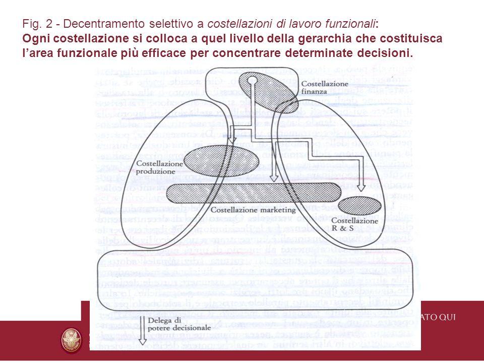 Fig. 2 - Decentramento selettivo a costellazioni di lavoro funzionali: Ogni costellazione si colloca a quel livello della gerarchia che costituisca la