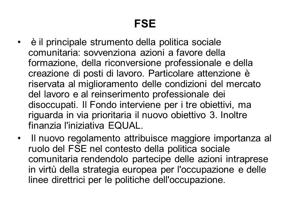 FSE è il principale strumento della politica sociale comunitaria: sovvenziona azioni a favore della formazione, della riconversione professionale e della creazione di posti di lavoro.
