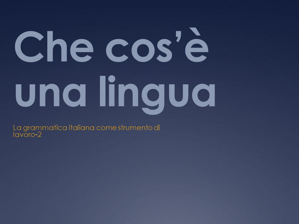 Che cosè una lingua La grammatica italiana come strumento di lavoro-2