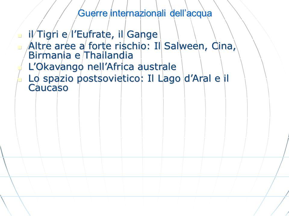 Guerre internazionali dellacqua il Tigri e lEufrate, il Gange il Tigri e lEufrate, il Gange Altre aree a forte rischio: Il Salween, Cina, Birmania e T