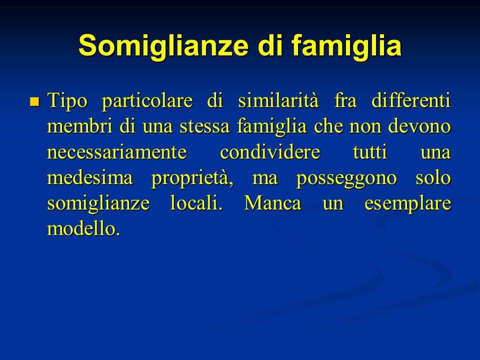 Somiglianze di famiglia Tipo particolare di similarità fra differenti membri di una stessa famiglia che non devono necessariamente condividere tutti u