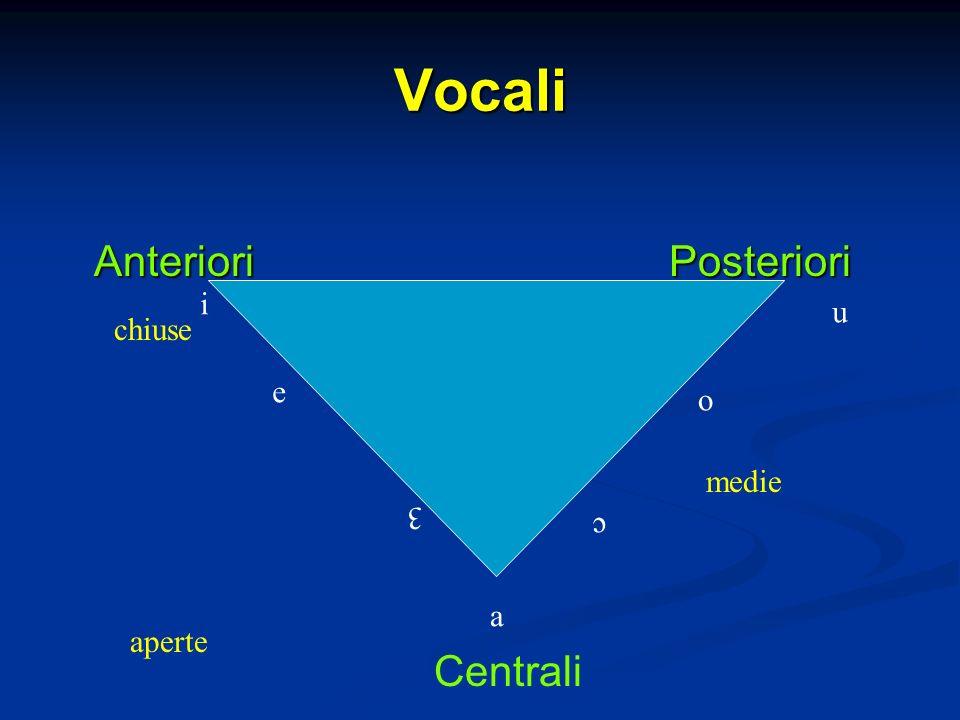 Vocali Anteriori Posteriori i u a o e 3 c chiuse aperte Centrali medie