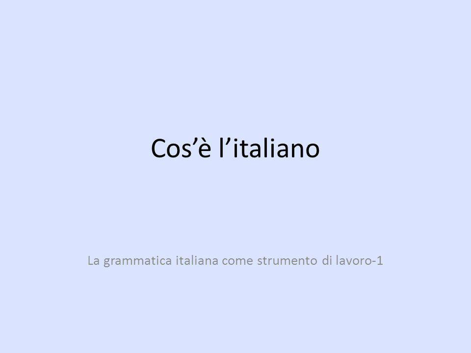 Cosè litaliano La grammatica italiana come strumento di lavoro-1