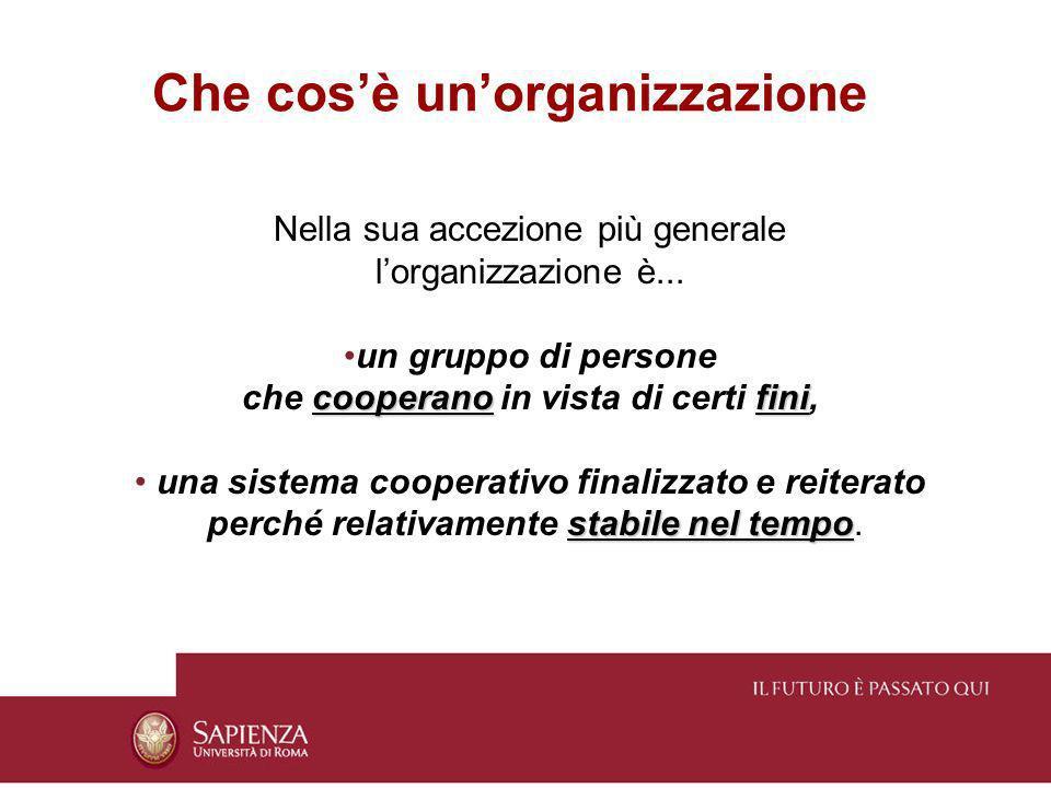 Che cosè unorganizzazione Nella sua accezione più generale lorganizzazione è... un gruppo di persone cooperanofini che cooperano in vista di certi fin