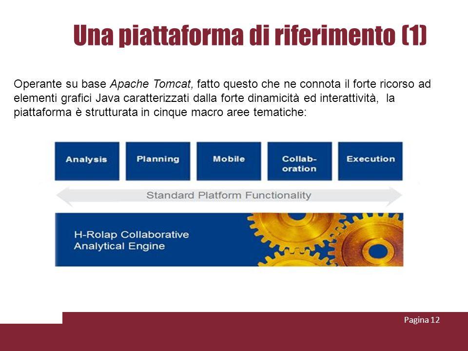 Pagina 12 Una piattaforma di riferimento (1) Operante su base Apache Tomcat, fatto questo che ne connota il forte ricorso ad elementi grafici Java caratterizzati dalla forte dinamicità ed interattività, la piattaforma è strutturata in cinque macro aree tematiche: