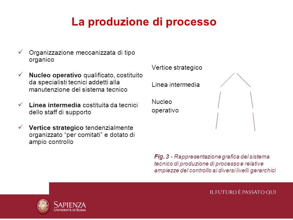 La produzione di processo Organizzazione meccanizzata di tipo organico Nucleo operativo qualificato, costituito da specialisti tecnici addetti alla ma