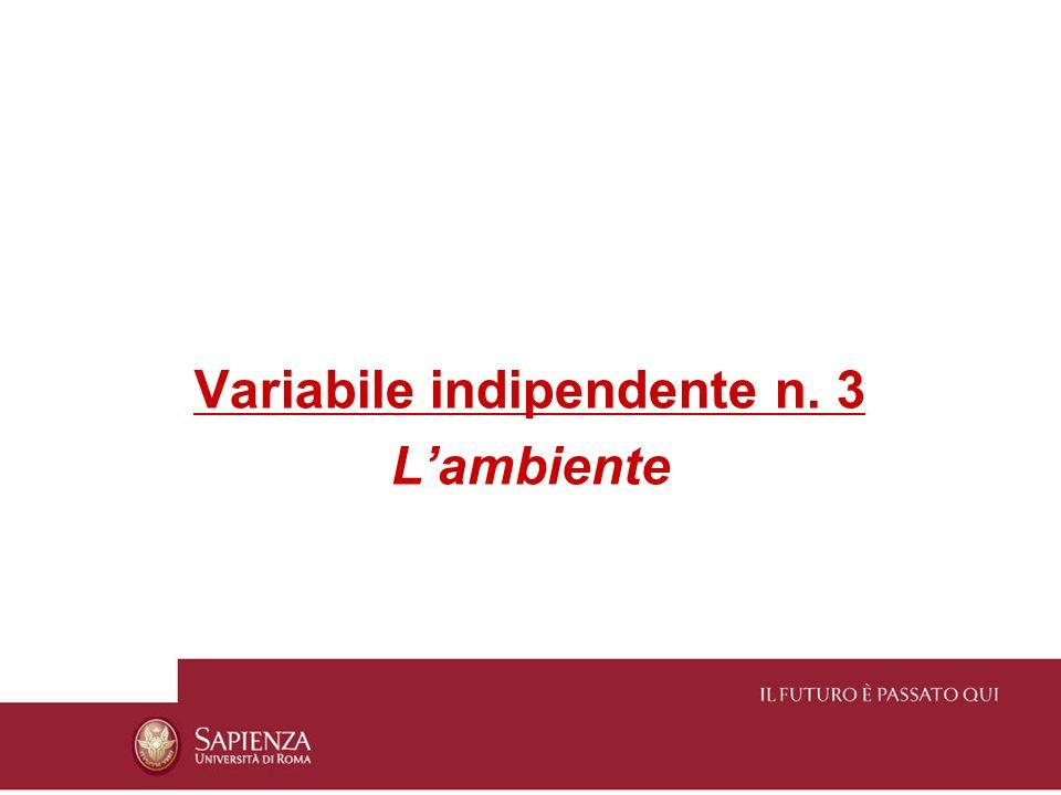 Variabile indipendente n. 3 Lambiente