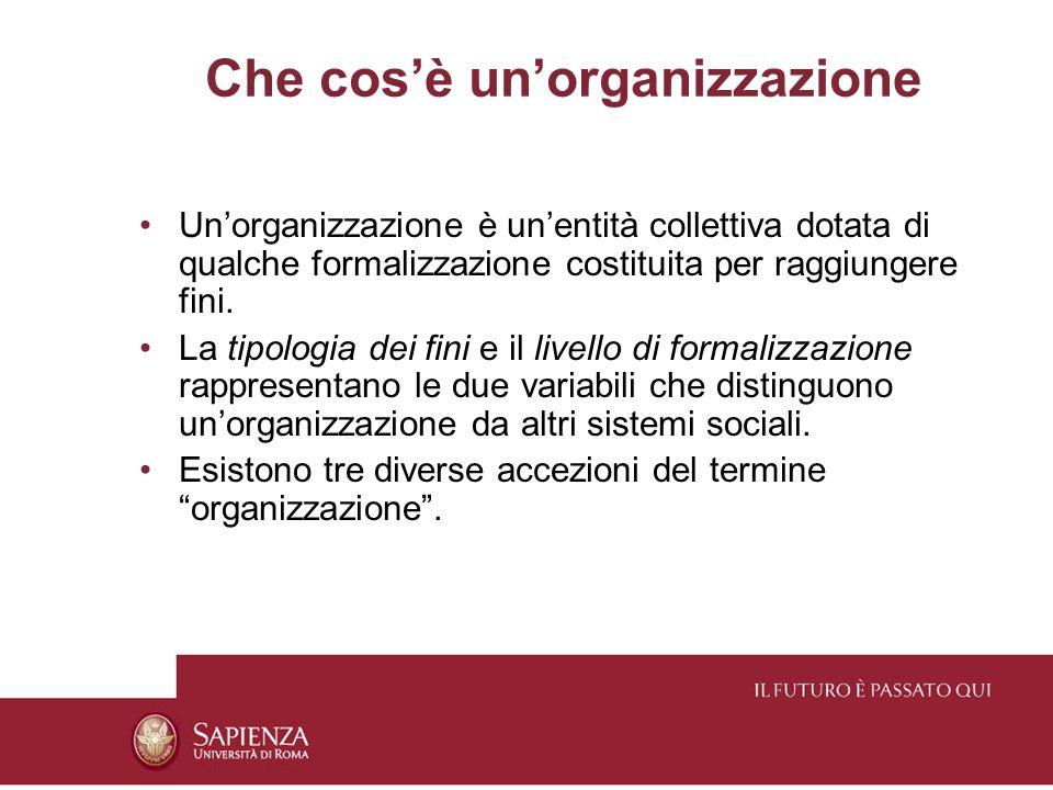 Il sistema organizzativo Un sistema organizzativo è ununità definita da fini/obiettivi, risorse, configurazioni che le consentono di sviluppare il controllo e la promozione di attività e processi specifici, sottratti al controllo di altri.