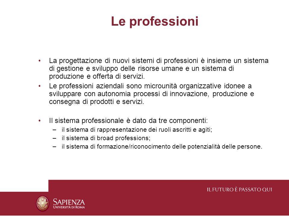 Le professioni La progettazione di nuovi sistemi di professioni è insieme un sistema di gestione e sviluppo delle risorse umane e un sistema di produzione e offerta di servizi.