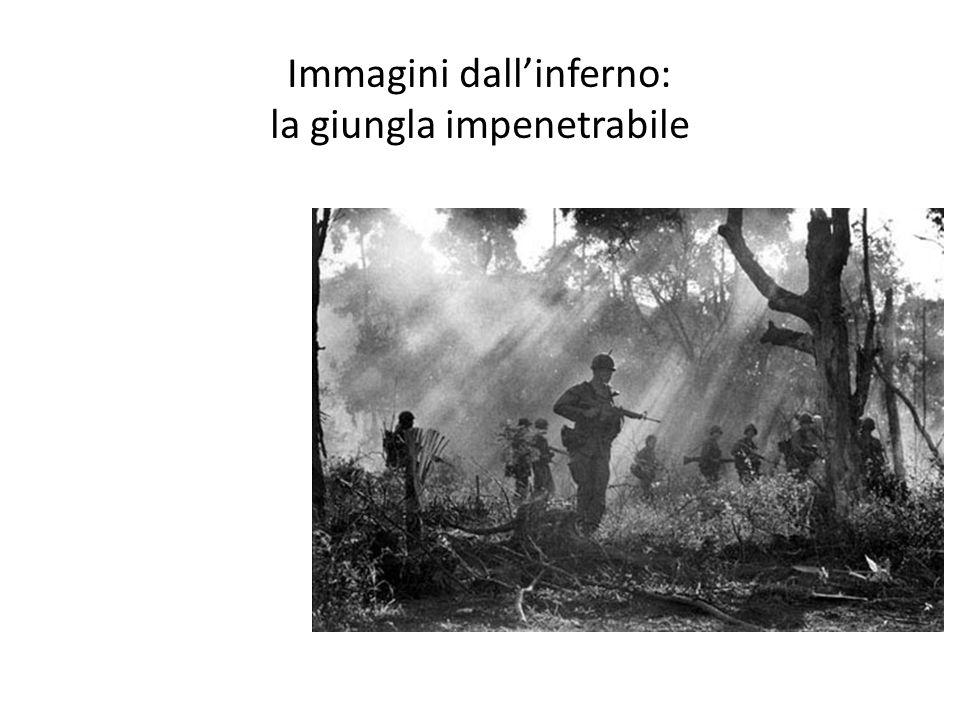 Immagini dallinferno: la giungla impenetrabile