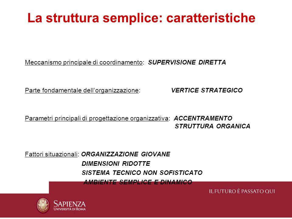 La struttura semplice: caratteristiche Meccanismo principale di coordinamento: SUPERVISIONE DIRETTA Parte fondamentale dellorganizzazione: VERTICE STR