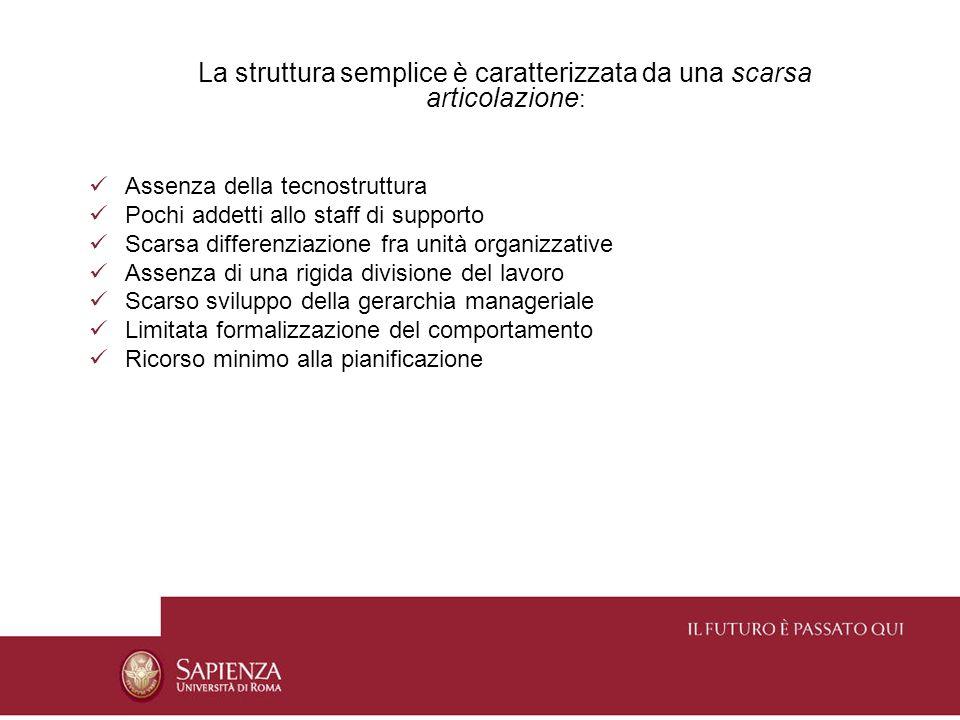 La struttura semplice è caratterizzata da una scarsa articolazione : Assenza della tecnostruttura Pochi addetti allo staff di supporto Scarsa differen