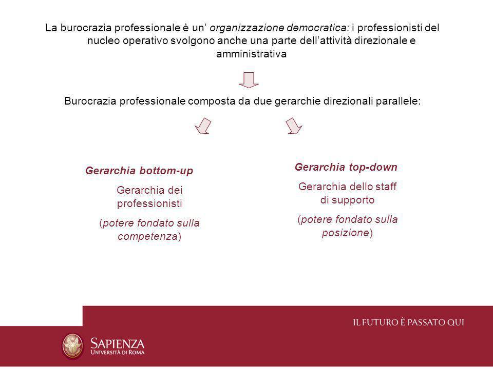 La burocrazia professionale è un organizzazione democratica: i professionisti del nucleo operativo svolgono anche una parte dellattività direzionale e