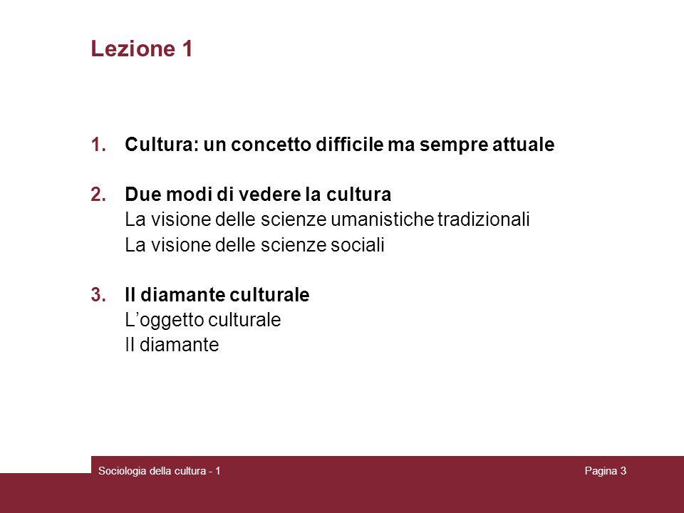 Sociologia della cultura - 1Pagina 14 Nella visione più recente delle scienze sociali la cultura è: legata alla società da un rapporto di continuo adattamento circoscritta a ciò che ha significato pubblico e condiviso avalutativa relativa processuale, unattività persistente e durevole