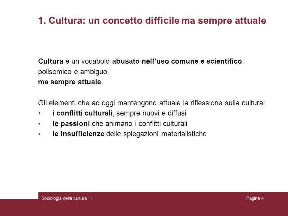 Sociologia della cultura - 1Pagina 4 1. Cultura: un concetto difficile ma sempre attuale Cultura è un vocabolo abusato nelluso comune e scientifico, p