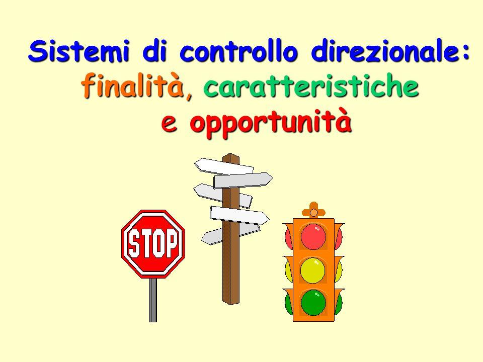 Sistemi di controllo direzionale: finalità, caratteristiche e opportunità