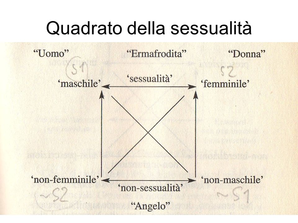 Quadrato della sessualità