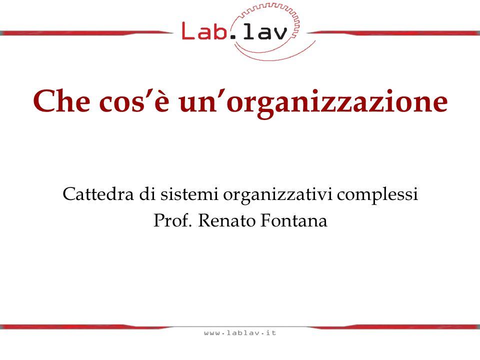 Cattedra di sistemi organizzativi complessi Prof. Renato Fontana Che cosè unorganizzazione