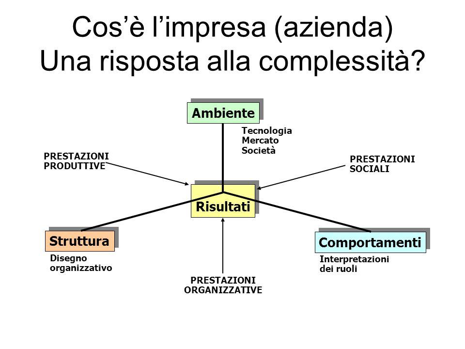 Cosè limpresa (azienda) Una risposta alla complessità.