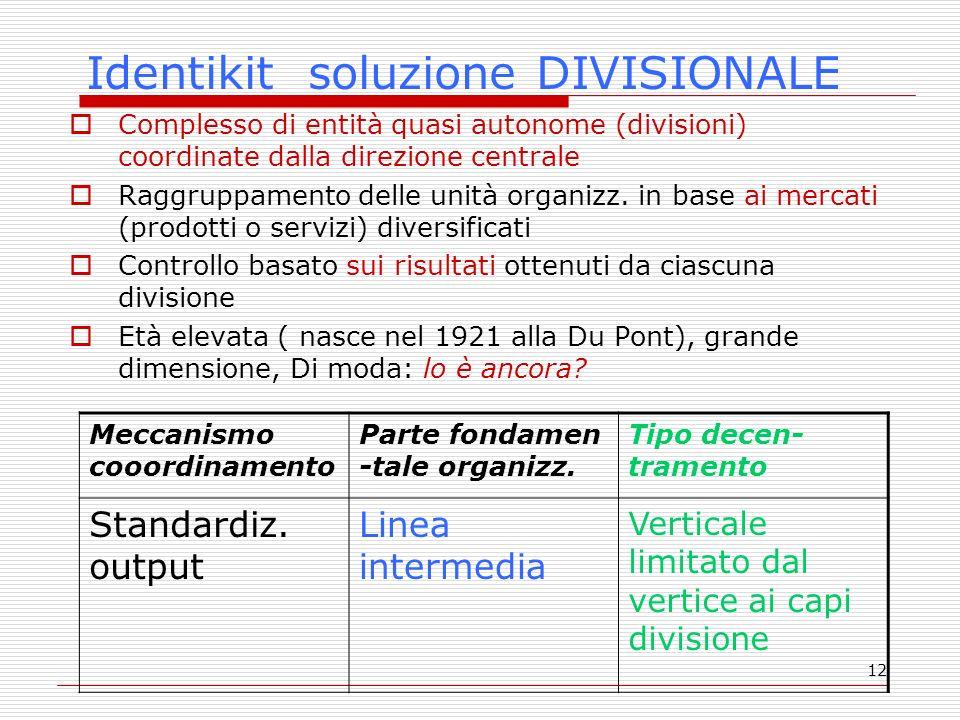 12 Identikit soluzione DIVISIONALE Complesso di entità quasi autonome (divisioni) coordinate dalla direzione centrale Raggruppamento delle unità organizz.