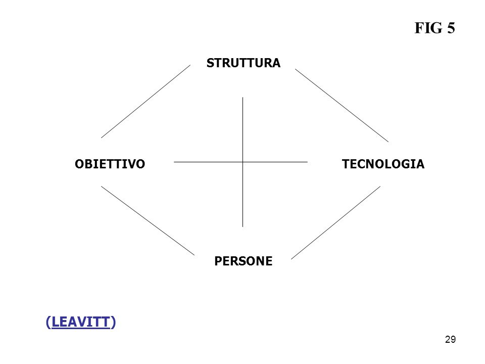 (LEAVITT) STRUTTURA OBIETTIVOTECNOLOGIA PERSONE FIG 5 29