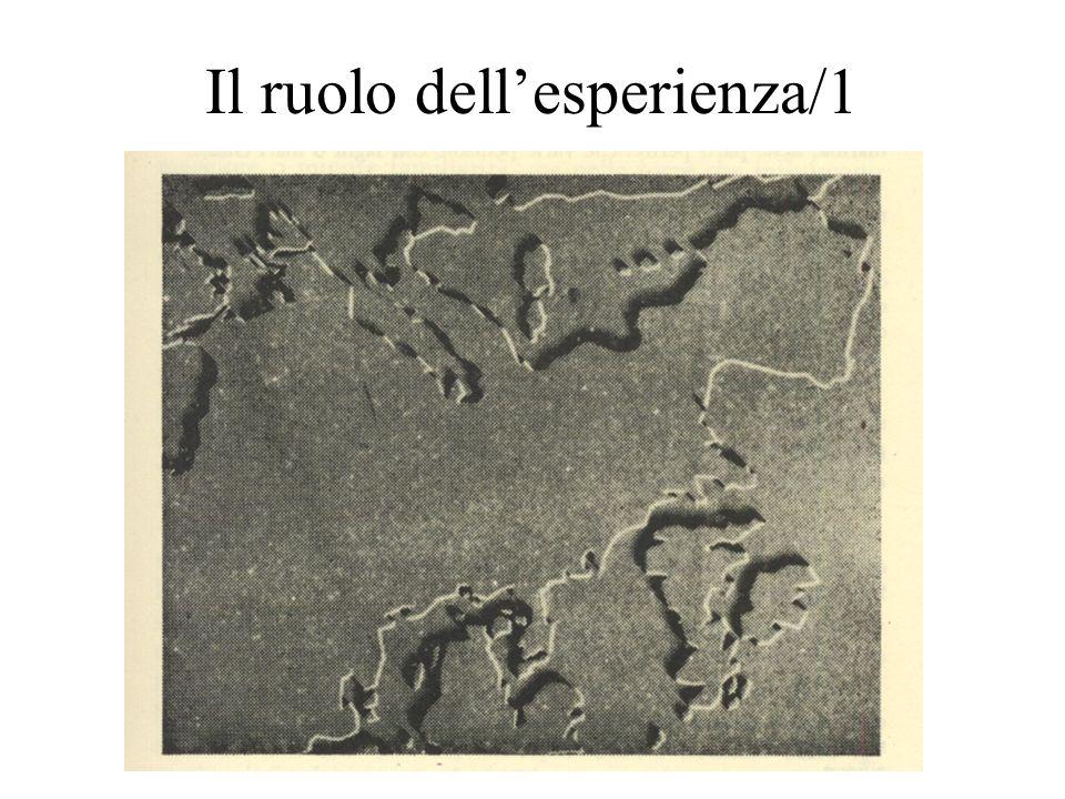 Il ruolo dellesperienza/1