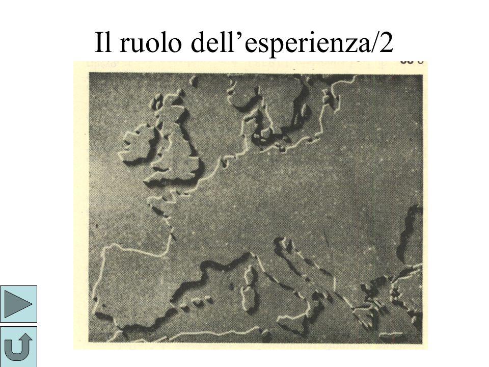 Il ruolo dellesperienza/2