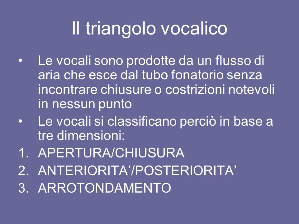 Il triangolo vocalico Le vocali sono prodotte da un flusso di aria che esce dal tubo fonatorio senza incontrare chiusure o costrizioni notevoli in nes