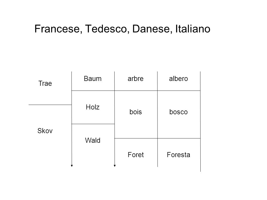 Baum Francese, Tedesco, Danese, Italiano Holz Wald Trae Skov arbre bois ForetForesta bosco albero